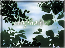Leafshadow by ToadsDontExist