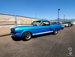 GT-350 Blues by Swanee3