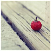 Red Berry by Juliabohemian