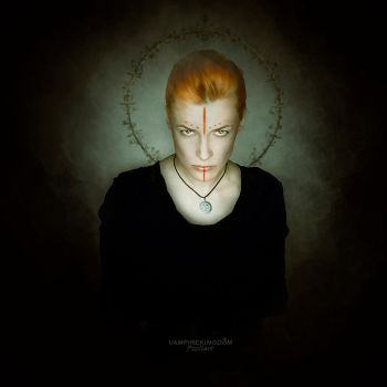 Ironies by vampirekingdom