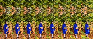 Mrs A* And Persian Ironwood Autumnal Septal Stereo by aegiandyad