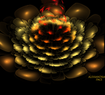 Flame Rose 3 d by AlmaChiaraAlex