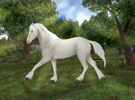 (Star Stable Online) Tinker by SkyFlyer206