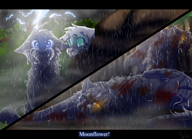 Moonflower's Death (Warrior Cats) by WarriorCat3042
