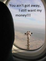 I still want my money!!! by Proud2BMe1936
