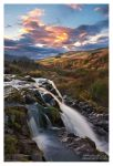 Loup of Fintry by SebastianKraus