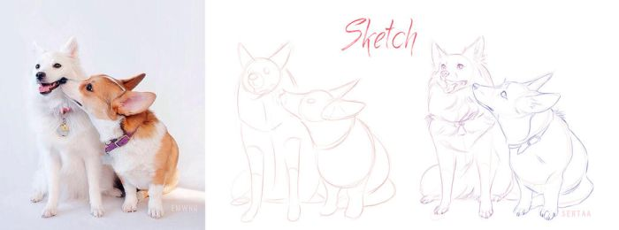 Sketch Dogs by Sertaa