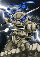 Leonardo TMNT Sketch Card by RichardCox