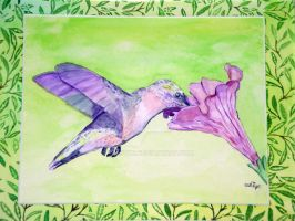 Humming bird watercolor by SurfTiki