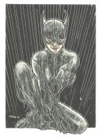 CATWOMAN STRIKES COVER 2 by leagueof1