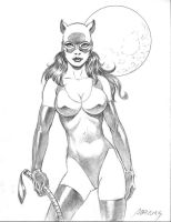 Catwoman Commission by PaulAbrams