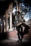 Diablo III - Demon Hunter: On Stranger's Land by ferpsf
