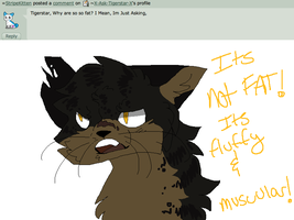 fluffy & muscular - Answer #21 by X-Ask-Tigerstar-X