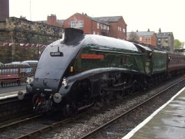 LNER A4 60009 Union of South Africa, Bury by DaveOnTheRails