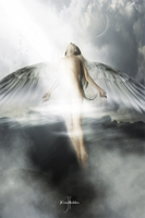 angelous by jcruzrobles