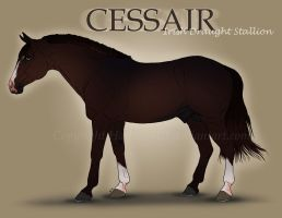 Cessair Reference by Hathien603
