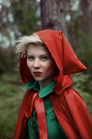 The Red Riding Hood by kuzminphoto