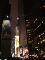 New Years in NYC by amandameadows