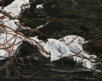 spring thaw by simplelines