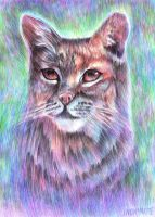 Whimsical Bobcat by snowmarite