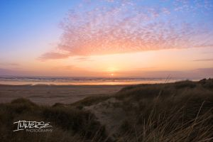 From the Dunes by Immerse-photography