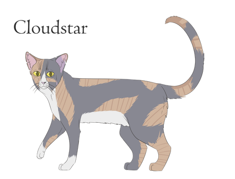 Cloudstar by TheAwesomeTomato