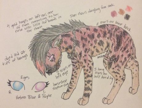 Contest Entry Hyena OC for AristaLight by beany123