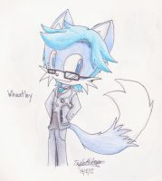 Wheatley the Fox by Junka-speed