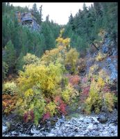 The Color of Autumn by shmoo