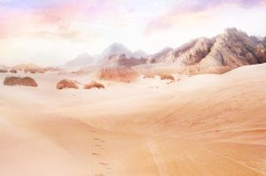 Desert Heat by RGDart