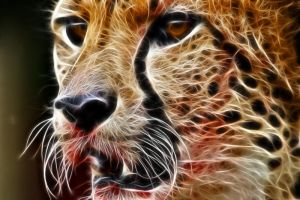 Fractal Cheetah 3 by artofpain