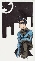 Nightwing by Blrout