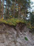 sand cliff by Finsternis-stock