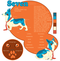 Seven Reference Sheet by iRaynebow