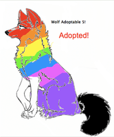 Write to Adopt Wolf 5 -CLOSED- by WarriorCatLuver123