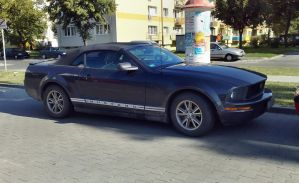 Mustang Convertible by Lew-GTR