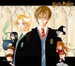 HP-Slytherin and Griffindor by Kairei