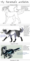 Fursona's evolution by CatherineSt