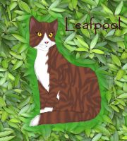 Leafpool by fluffylovey