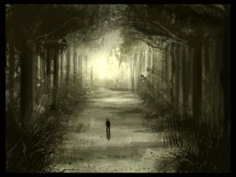 .:Forest Path:. by David-Holland
