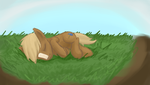 Bill asleep on the grass by Bill-the-Pony