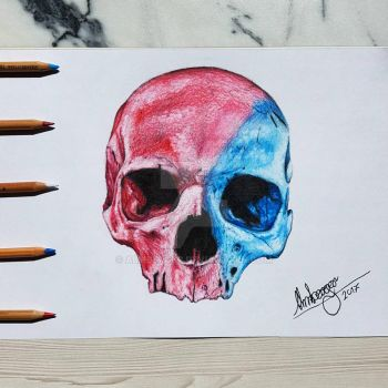 color skull by almberger