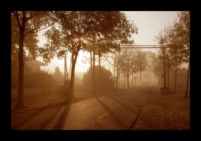morning fog by ssilence