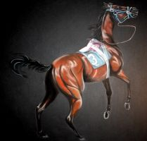Racehorse by EllyWithAWhy