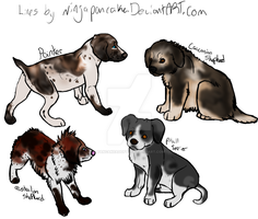 Uncommon Dog Breed Adoptables by PancakeAdopts