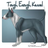 Commission: Bull Terrier by tailfeather