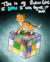 Rubix Cube by Applethecat13