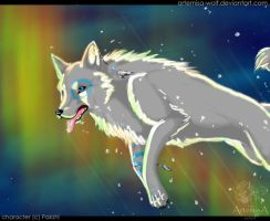 Through the northern lights by ArtemisA-wolf