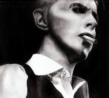 d.bowie by lullacrie