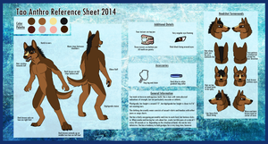 Tao Reference Sheet 2014 by TaoKyuubimon